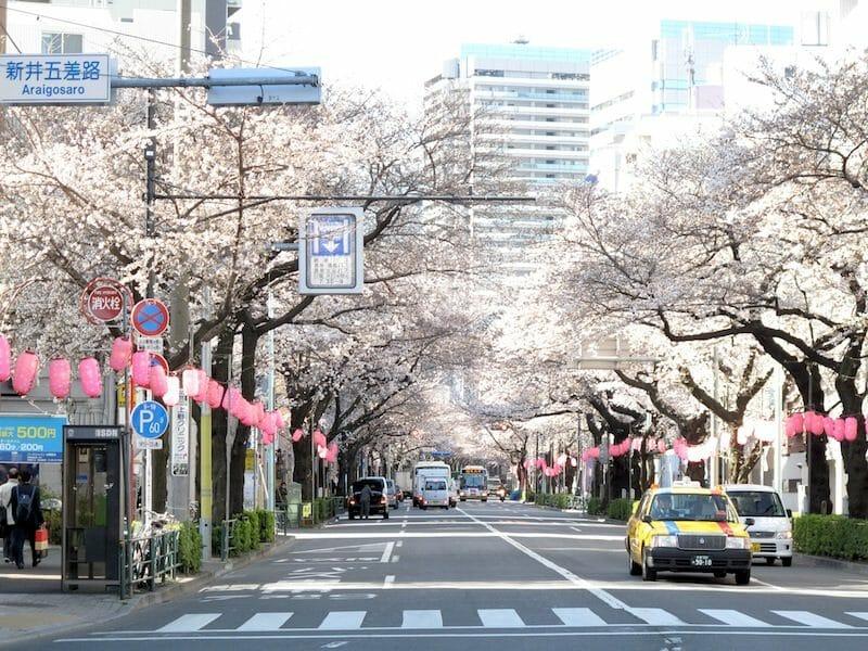 東京都中野区のリフォーム補助金制度について