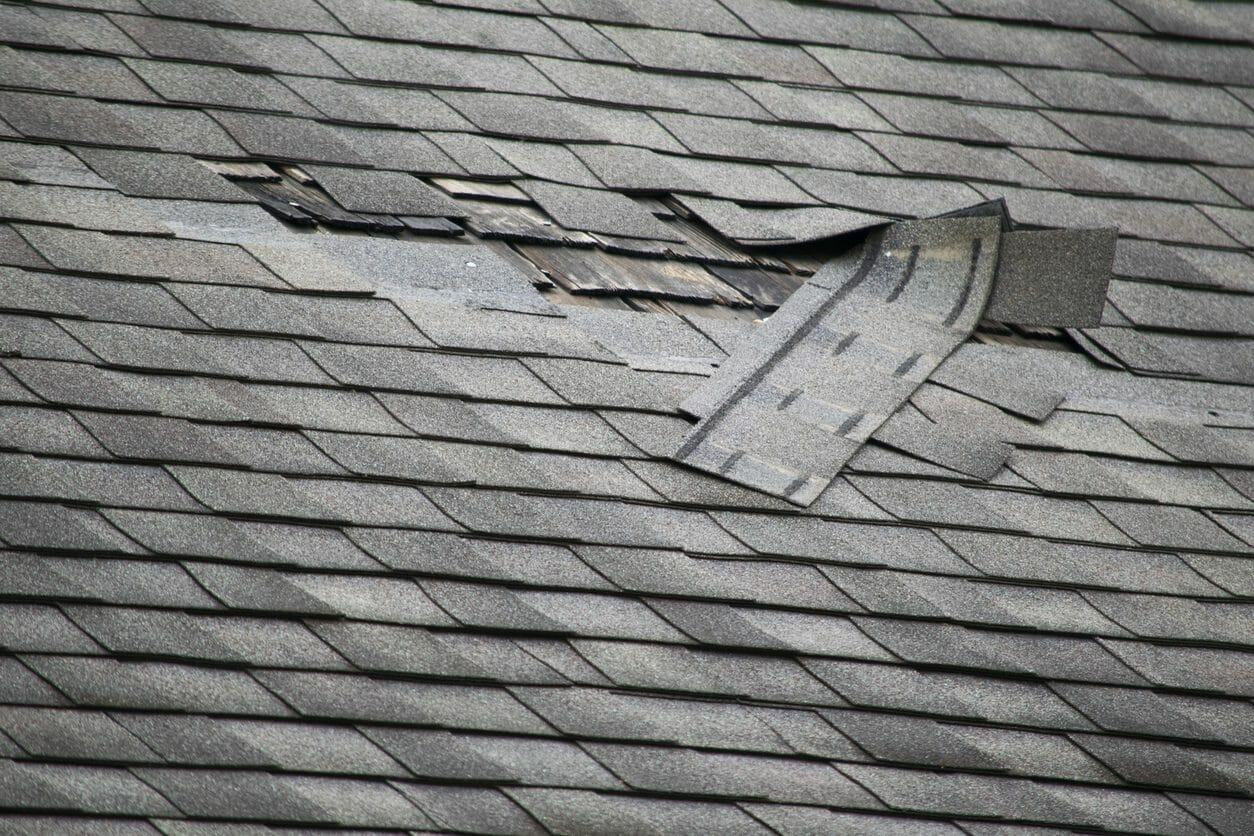 天井の雨漏りを修理・補修する費用は?