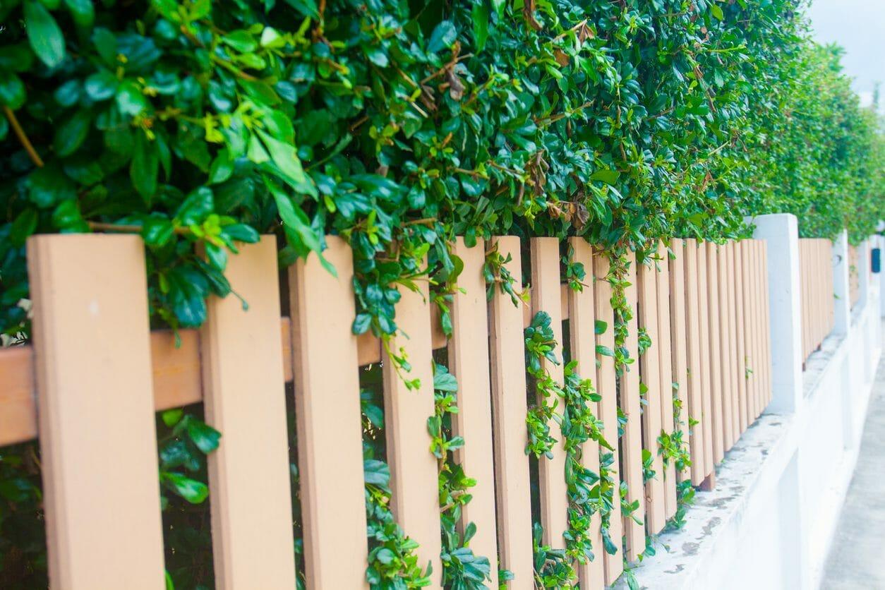ウッドフェンスを設置するリフォームの施工費用・価格の相場は?